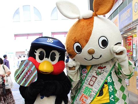 台東区「浅草新仲見世商店街ほおずきストリート」を訪問!!